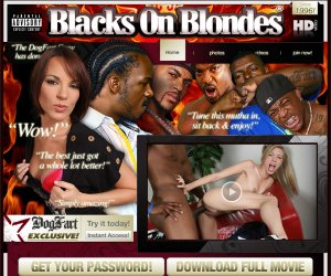 BLACKS ON BLONDES - 15 SOLID YEARS OF WEEKLY UPDATES!