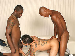 Gay latino sucks & fucks 2 black dicks