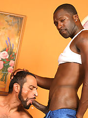 Muscular 3-some gay interracial assfuck facial