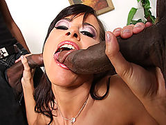 Fit French beauty does interracial anal threesome