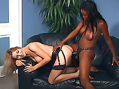 Lady Armani gives her babe a pussy plow