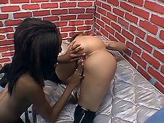 B&W lesbian sluts play with each other